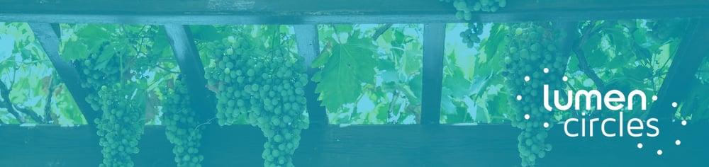 1500x355_unspl_grape arbor_milada-vigerova color-overlay logo v2
